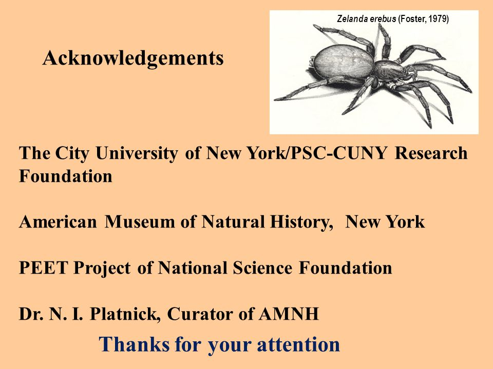 Thanks for your attention Acknowledgements The City University of New York/PSC-CUNY Research Foundation American Museum of Natural History, New York PEET Project of National Science Foundation Dr.