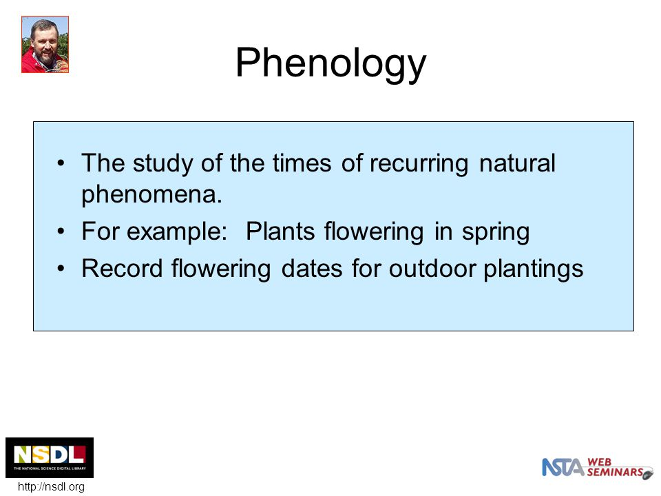 Phenology The study of the times of recurring natural phenomena.