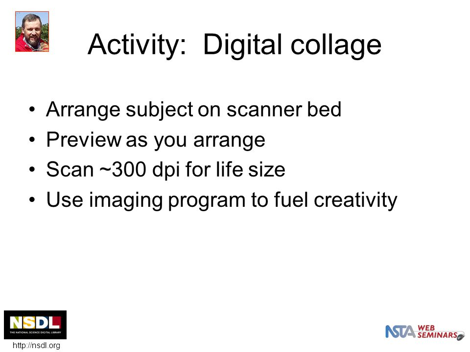 Activity: Digital collage Arrange subject on scanner bed Preview as you arrange Scan ~300 dpi for life size Use imaging program to fuel creativity http://nsdl.org