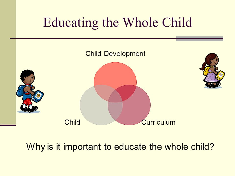 Educating the Whole Child Child Development CurriculumChild Why is it important to educate the whole child?