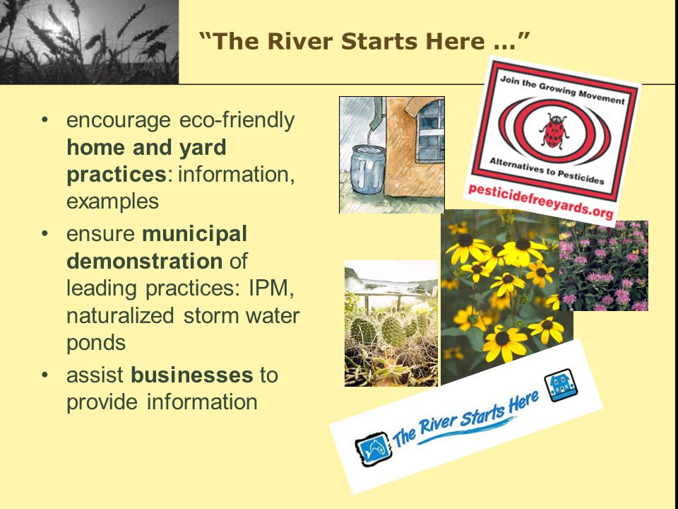 The River Starts Here … encourage eco-friendly home and yard practices: information, examples ensure municipal demonstration of leading practices: IPM, naturalized storm water ponds assist businesses to provide information
