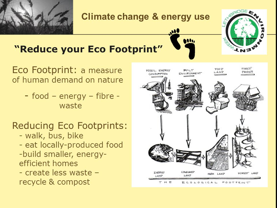 … it's as easy as changing a light bulb… Eco Footprint: a measure of human demand on nature - food – energy – fibre - waste Reducing Eco Footprints: - walk, bus, bike - eat locally-produced food -build smaller, energy- efficient homes - create less waste – recycle & compost Climate change & energy use Reduce your Eco Footprint