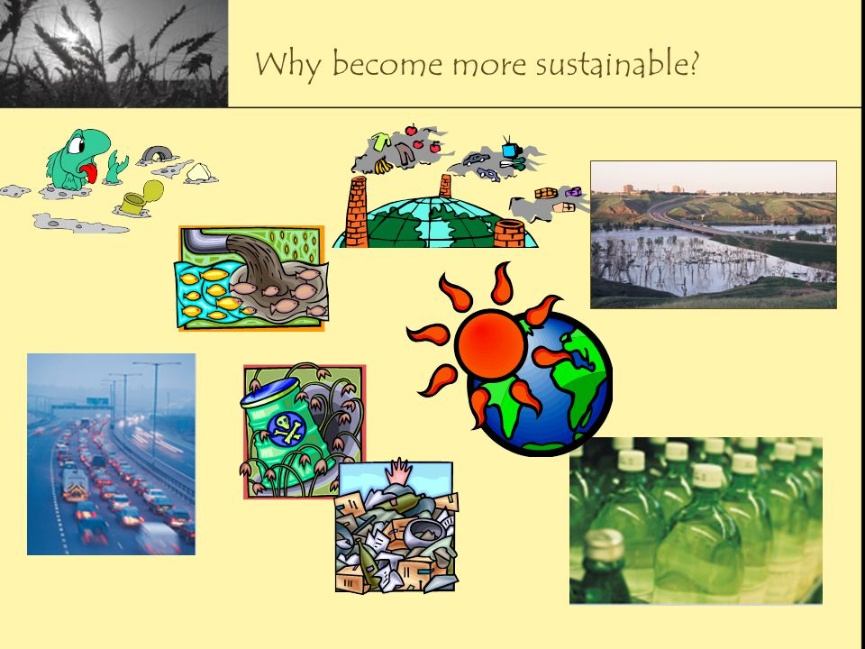 Why become more sustainable