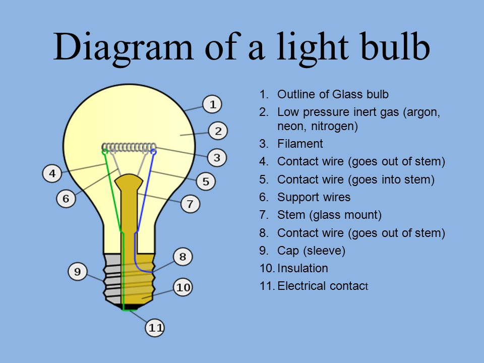 Diagram of a light bulb 1.Outline of Glass bulb 2.Low pressure inert gas (argon, neon, nitrogen) 3.Filament 4.Contact wire (goes out of stem) 5.Contact wire (goes into stem) 6.Support wires 7.Stem (glass mount) 8.Contact wire (goes out of stem) 9.Cap (sleeve) 10.Insulation 11.Electrical contac t