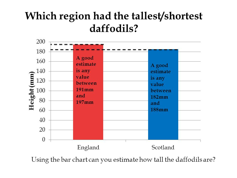 Which region had the tallest/shortest daffodils.