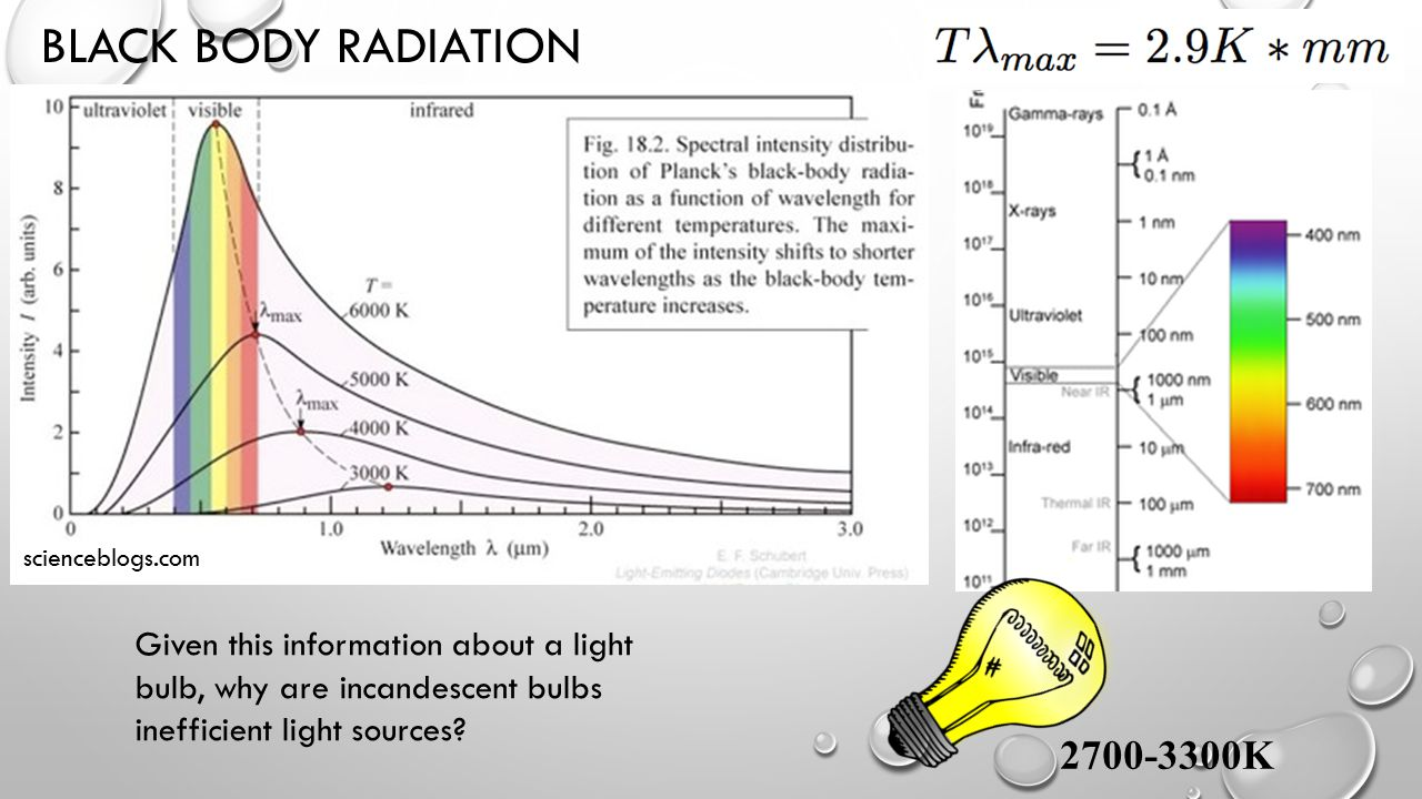 BLACK BODY RADIATION scienceblogs.com Blackbody radiation depends only on temperature of object 2700-3300K Given this information about a light bulb, why are incandescent bulbs inefficient light sources?