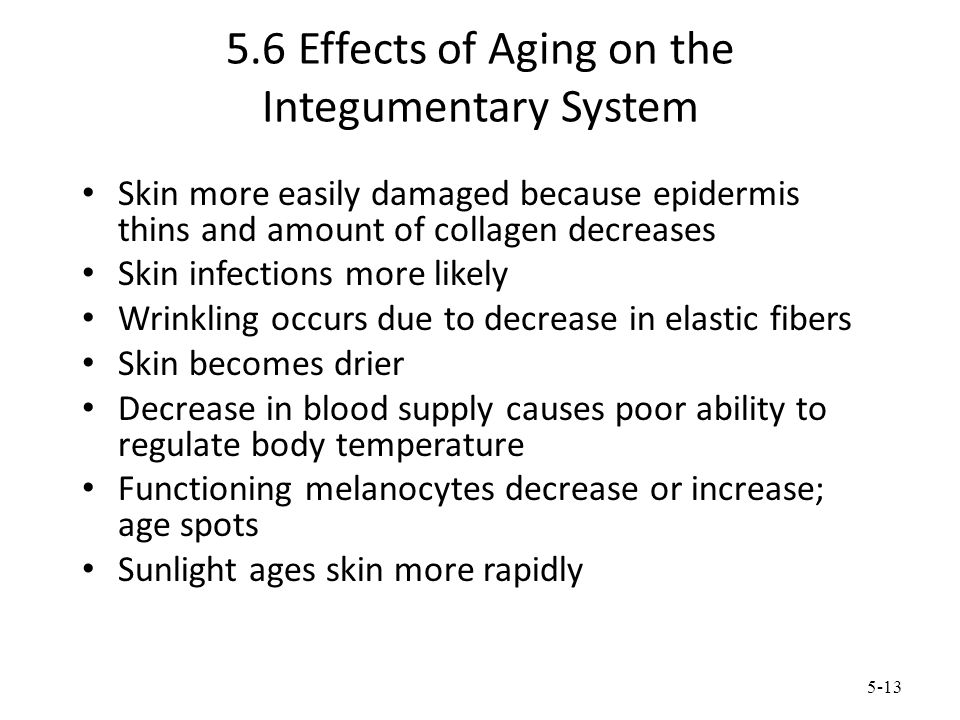 5-13 5.6 Effects of Aging on the Integumentary System Skin more easily damaged because epidermis thins and amount of collagen decreases Skin infection