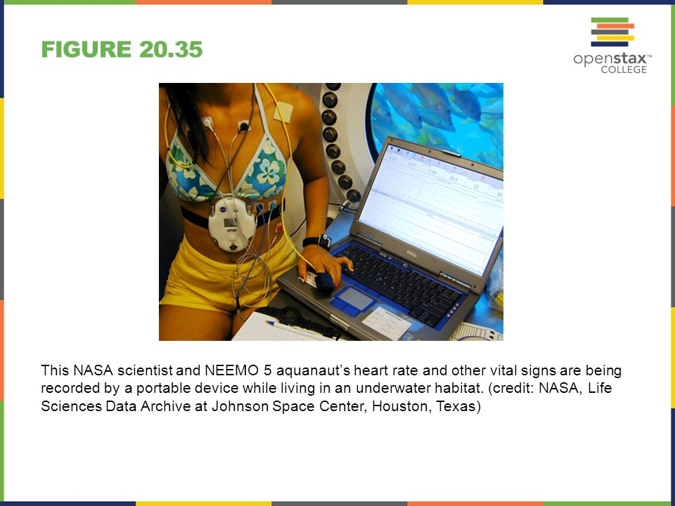 FIGURE 20.35 This NASA scientist and NEEMO 5 aquanaut's heart rate and other vital signs are being recorded by a portable device while living in an un