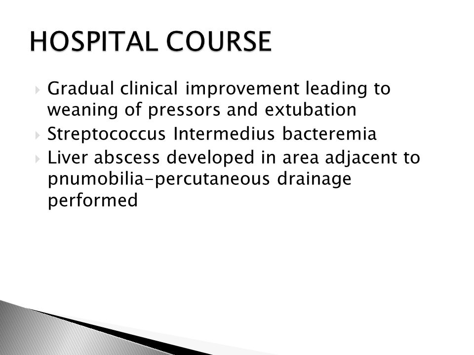  Gradual clinical improvement leading to weaning of pressors and extubation  Streptococcus Intermedius bacteremia  Liver abscess developed in area adjacent to pnumobilia-percutaneous drainage performed