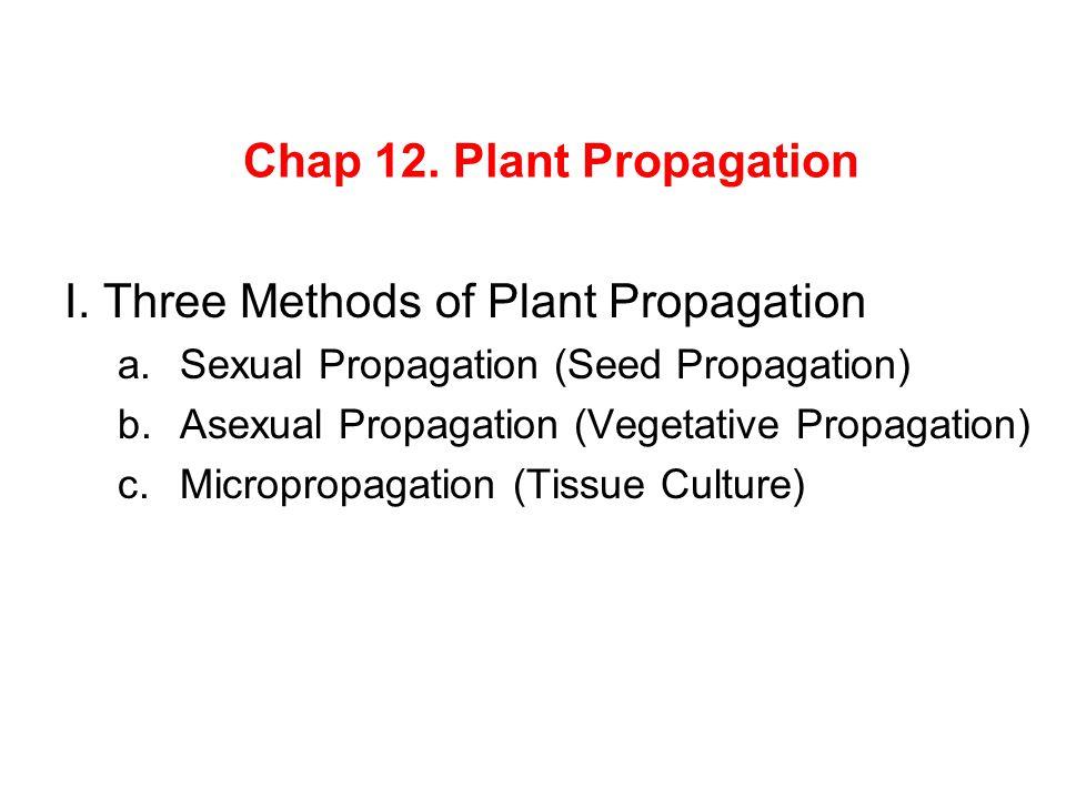 Chap 12. Plant Propagation I. Three Methods of Plant Propagation a.Sexual Propagation (Seed Propagation) b.Asexual Propagation (Vegetative Propagation