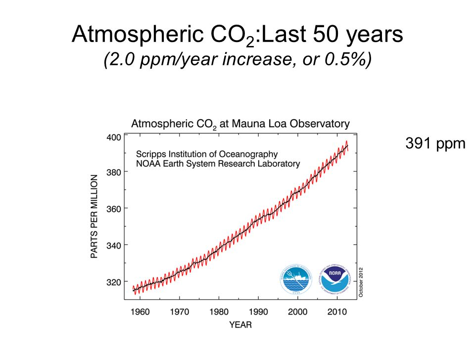Atmospheric CO 2 :Last 50 years (2.0 ppm/year increase, or 0.5%) 391 ppm