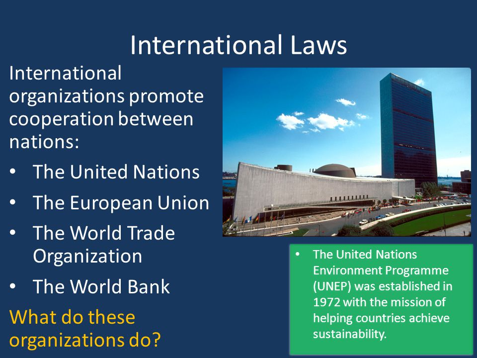 International Laws International organizations promote cooperation between nations: The United Nations The European Union The World Trade Organization The World Bank What do these organizations do.