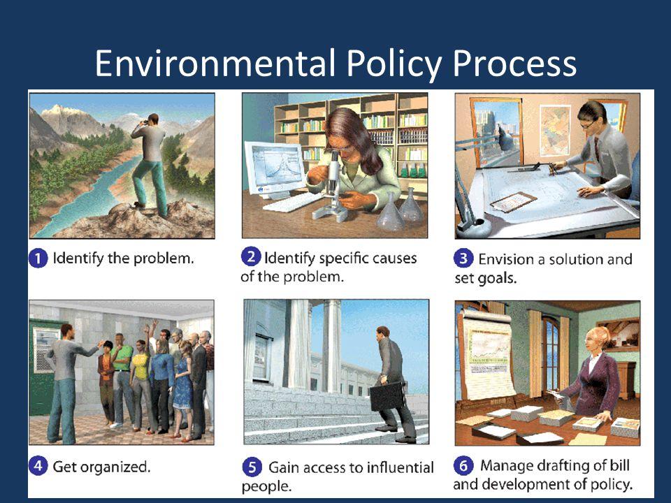 Environmental Policy Process