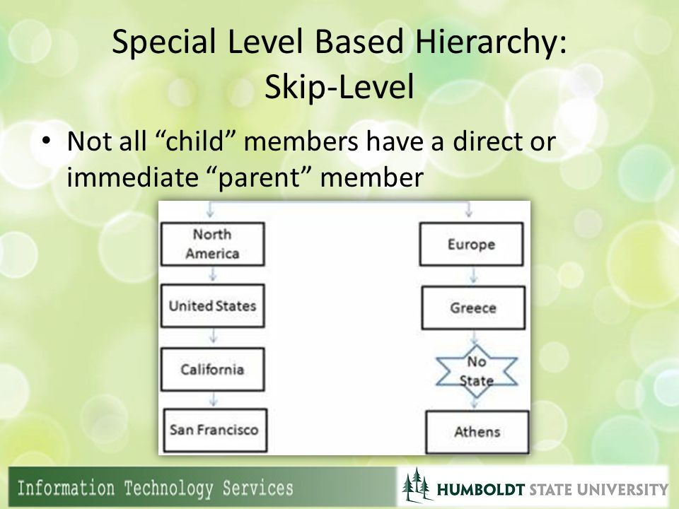 "Special Level Based Hierarchy: Skip-Level Not all ""child"" members have a direct or immediate ""parent"" member"