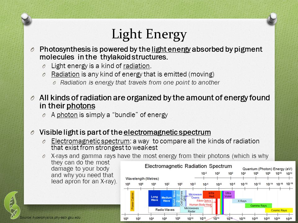 Light Energy O Photosynthesis is powered by the light energy absorbed by pigment molecules in the thylakoid structures.
