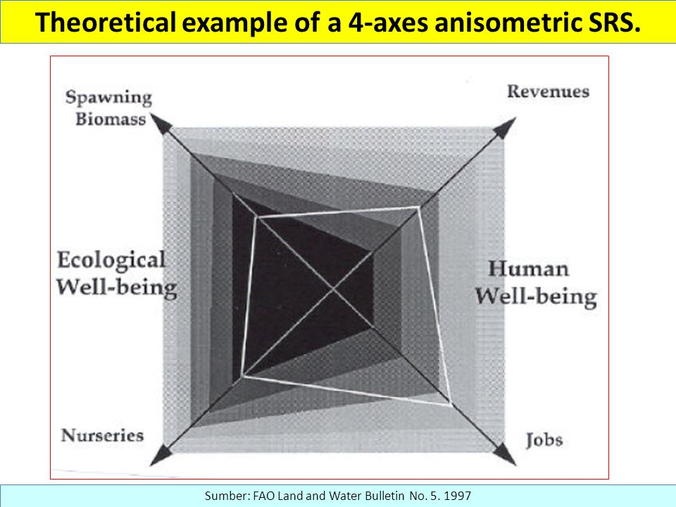 Theoretical example of a 4-axes anisometric SRS. Sumber: FAO Land and Water Bulletin No. 5. 1997