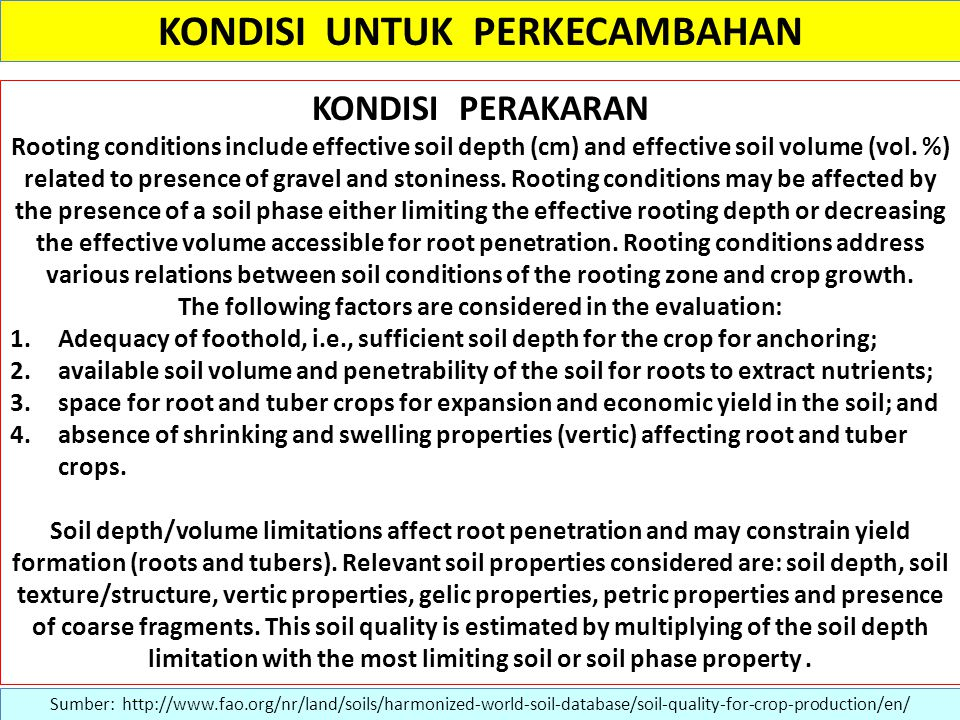 KONDISI UNTUK PERKECAMBAHAN KONDISI PERAKARAN Rooting conditions include effective soil depth (cm) and effective soil volume (vol.