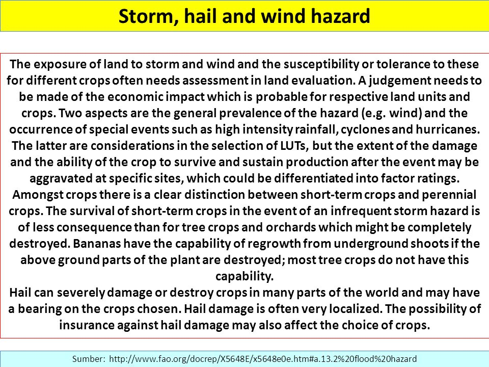 Storm, hail and wind hazard Sumber: http://www.fao.org/docrep/X5648E/x5648e0e.htm#a.13.2%20flood%20hazard The exposure of land to storm and wind and the susceptibility or tolerance to these for different crops often needs assessment in land evaluation.