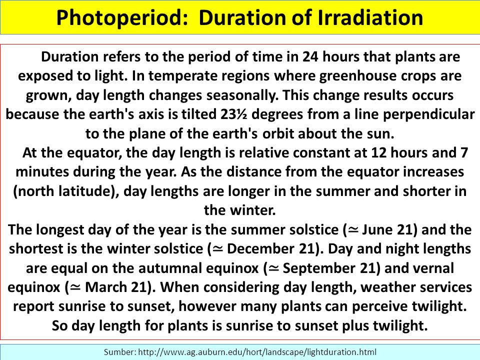 Photoperiod: Duration of Irradiation Sumber: http://www.ag.auburn.edu/hort/landscape/lightduration.html Duration refers to the period of time in 24 hours that plants are exposed to light.