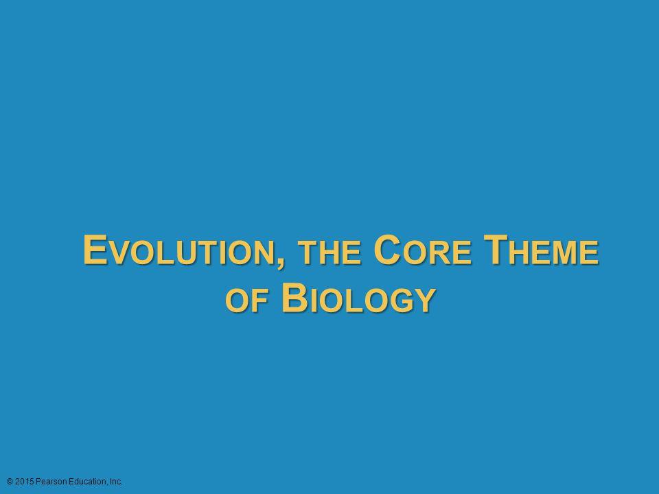E VOLUTION, THE C ORE T HEME OF B IOLOGY © 2015 Pearson Education, Inc.