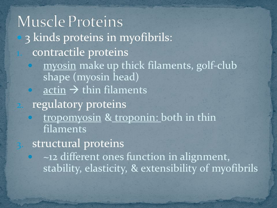 3 kinds proteins in myofibrils: 1.