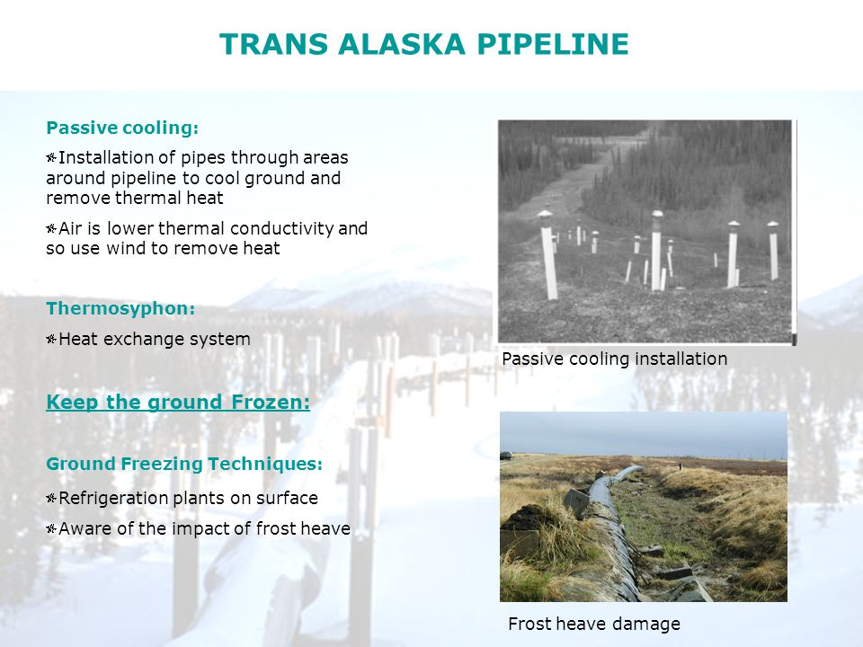 TRANS ALASKA PIPELINE Passive cooling: Installation of pipes through areas around pipeline to cool ground and remove thermal heat Air is lower thermal conductivity and so use wind to remove heat Thermosyphon: Heat exchange system Keep the ground Frozen: Ground Freezing Techniques: Refrigeration plants on surface Aware of the impact of frost heave Frost heave damage Passive cooling installation