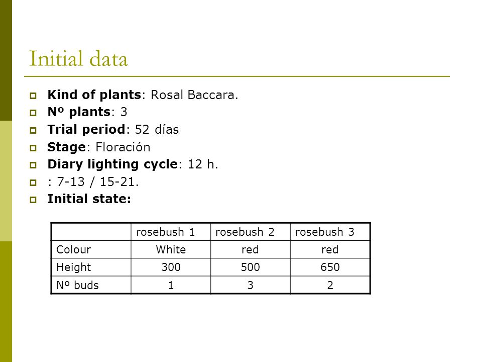 Initial data  Kind of plants: Rosal Baccara.