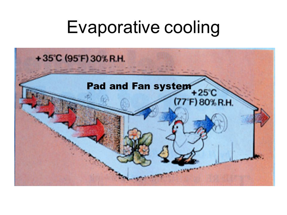 Evaporative cooling Pad and Fan system