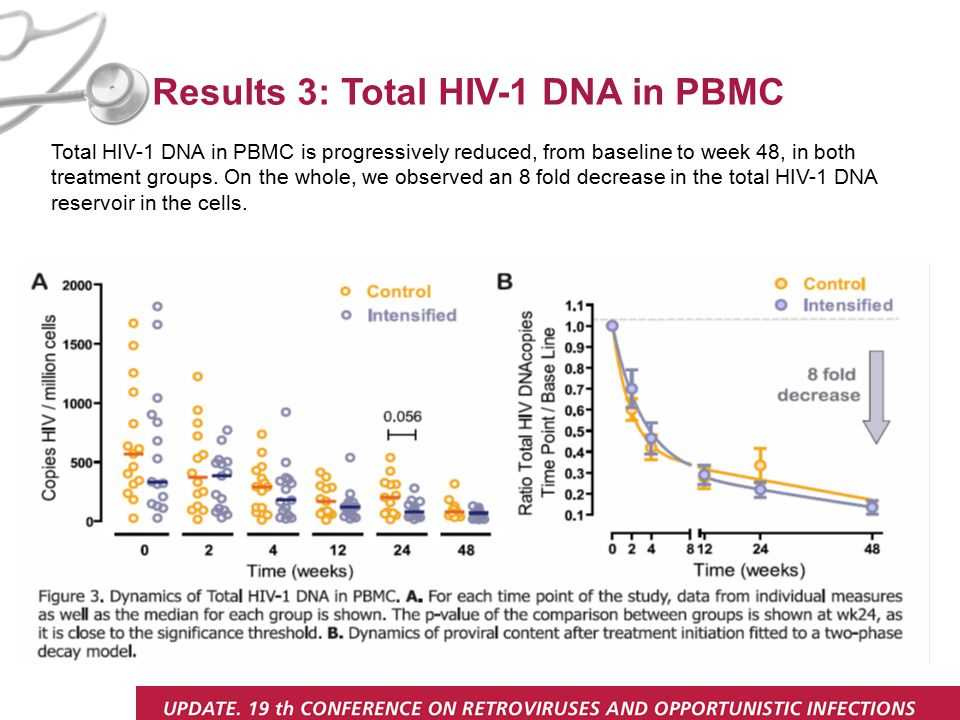 Results 3: Total HIV-1 DNA in PBMC Total HIV-1 DNA in PBMC is progressively reduced, from baseline to week 48, in both treatment groups.