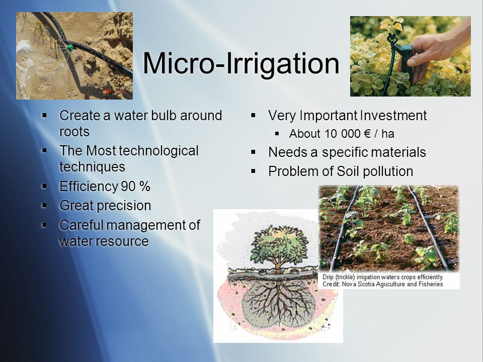 Micro-Irrigation  Create a water bulb around roots  The Most technological techniques  Efficiency 90 %  Great precision  Careful management of water resource  Create a water bulb around roots  The Most technological techniques  Efficiency 90 %  Great precision  Careful management of water resource  Very Important Investment  About 10 000 € / ha  Needs a specific materials  Problem of Soil pollution