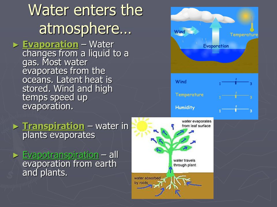 Water enters the atmosphere… ► Evaporation – Water changes from a liquid to a gas. Most water evaporates from the oceans. Latent heat is stored. Wind