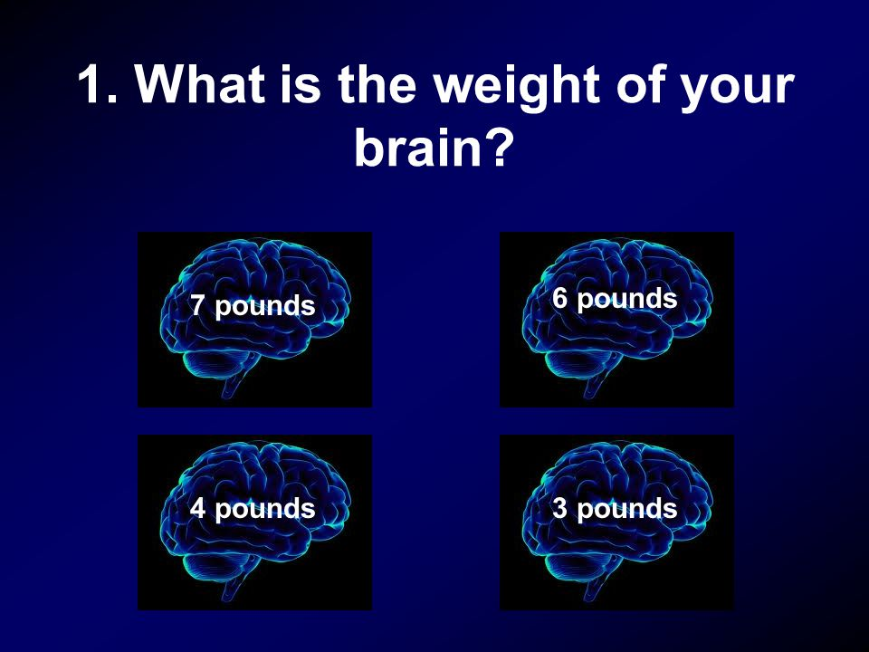 1. What is the weight of your brain? 7 pounds 3 pounds 6 pounds 4 pounds