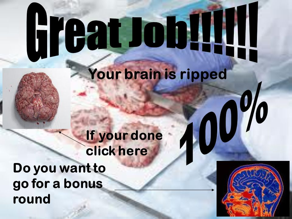 Your brain is ripped Do you want to go for a bonus round If your done click here