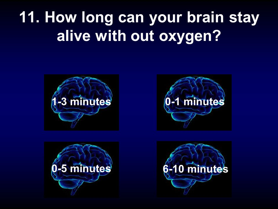 11. How long can your brain stay alive with out oxygen? 1-2 minutes 1-3 minutes 6-10 minutes 0-1 minutes 0-5 minutes