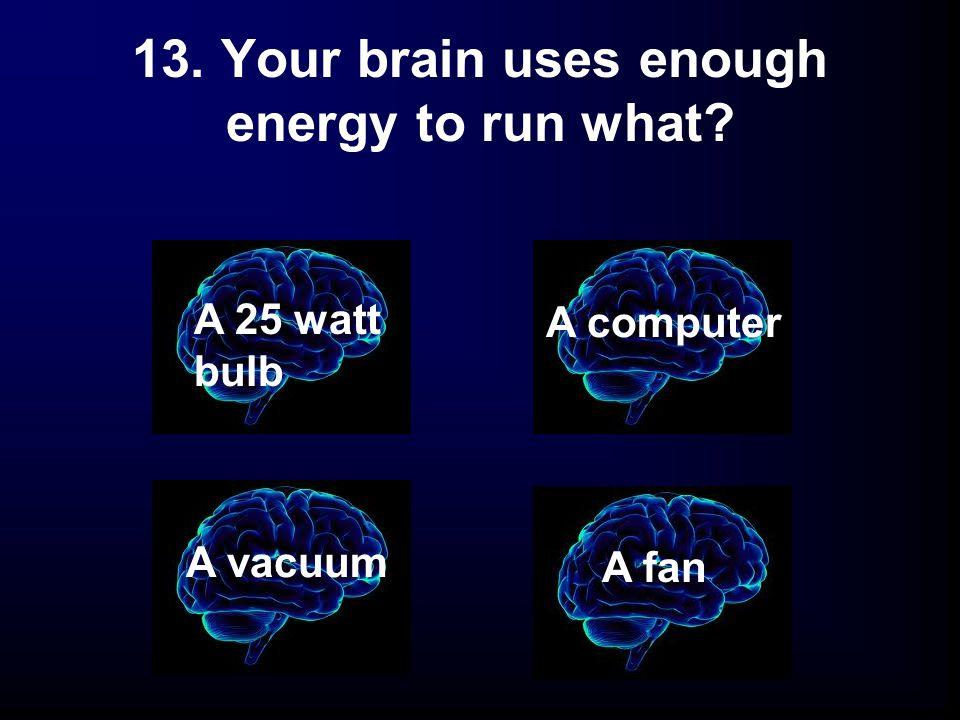 13. Your brain uses enough energy to run what? A 25 watt bulb A fan A vacuum A computer
