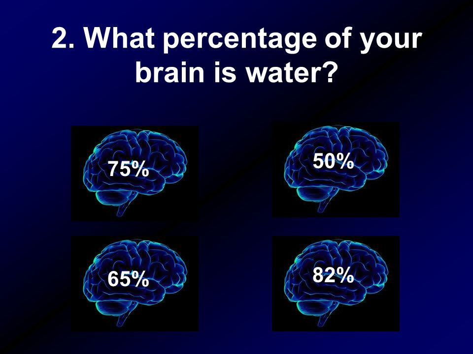 2. What percentage of your brain is water? 50% 82% 65% 75%