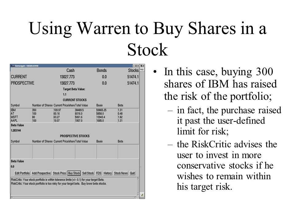Using Warren to Buy Shares in a Stock In this case, buying 300 shares of IBM has raised the risk of the portfolio; –in fact, the purchase raised it past the user-defined limit for risk; –the RiskCritic advises the user to invest in more conservative stocks if he wishes to remain within his target risk.