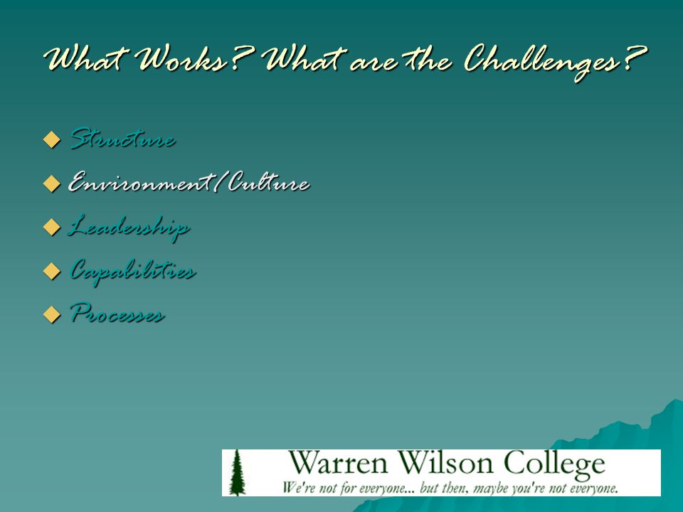 What Works? What are the Challenges?  Structure  Environment/Culture  Leadership  Capabilities  Processes