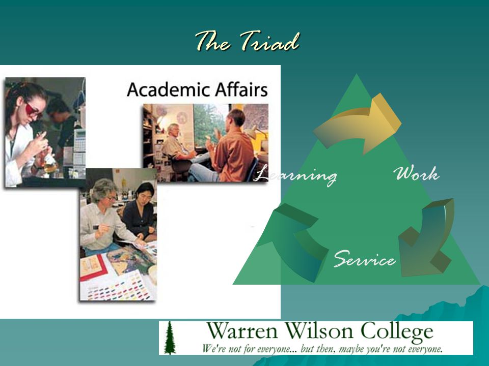 The Triad Learning Service Work
