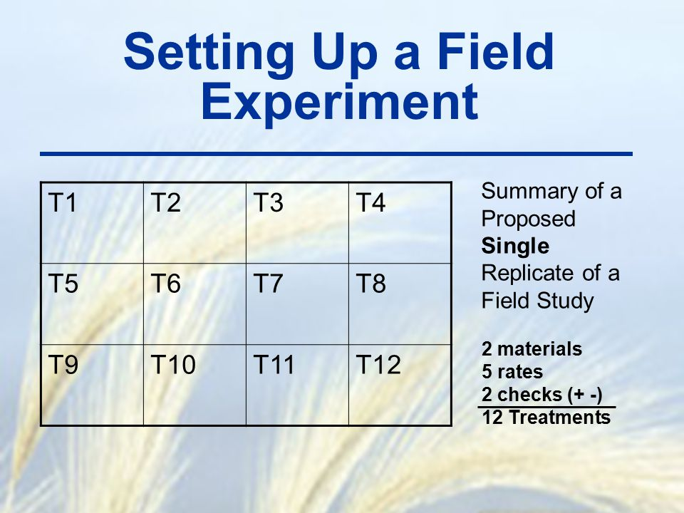 Setting Up a Field Experiment T1T2T3T4 T5T6T7T8 T9T10T11T12 Summary of a Proposed Single Replicate of a Field Study 2 materials 5 rates 2 checks (+ -)