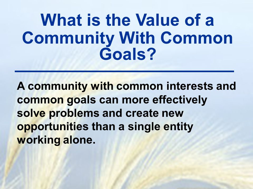 What is the Value of a Community With Common Goals? A community with common interests and common goals can more effectively solve problems and create