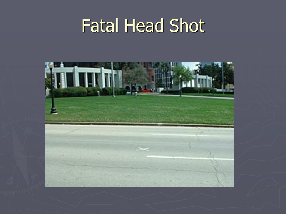 Fatal Head Shot