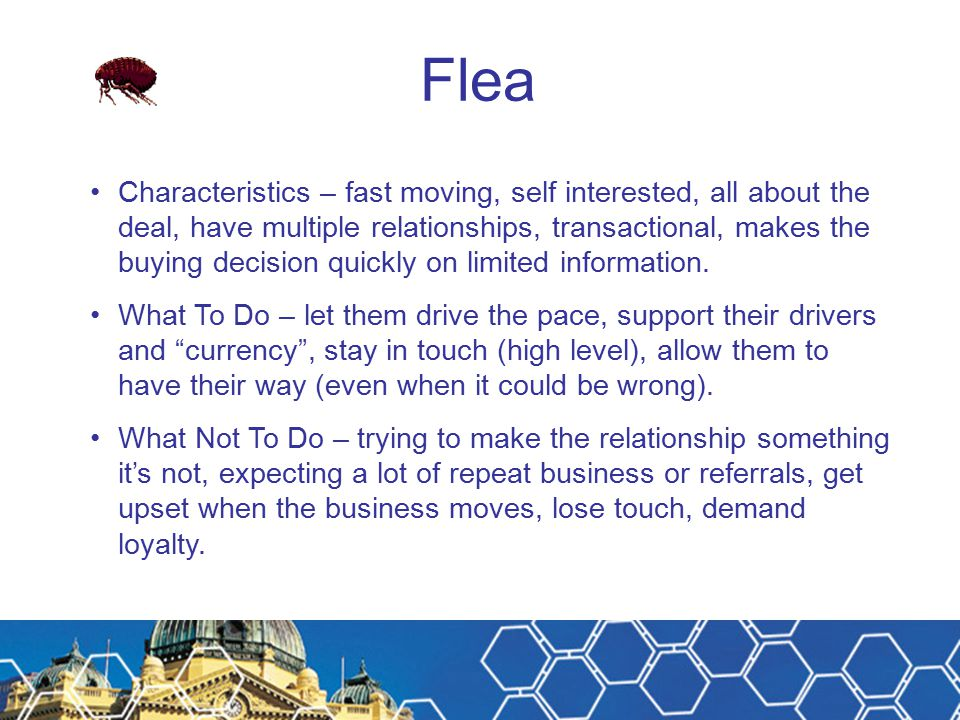 Flea Characteristics – fast moving, self interested, all about the deal, have multiple relationships, transactional, makes the buying decision quickly on limited information.