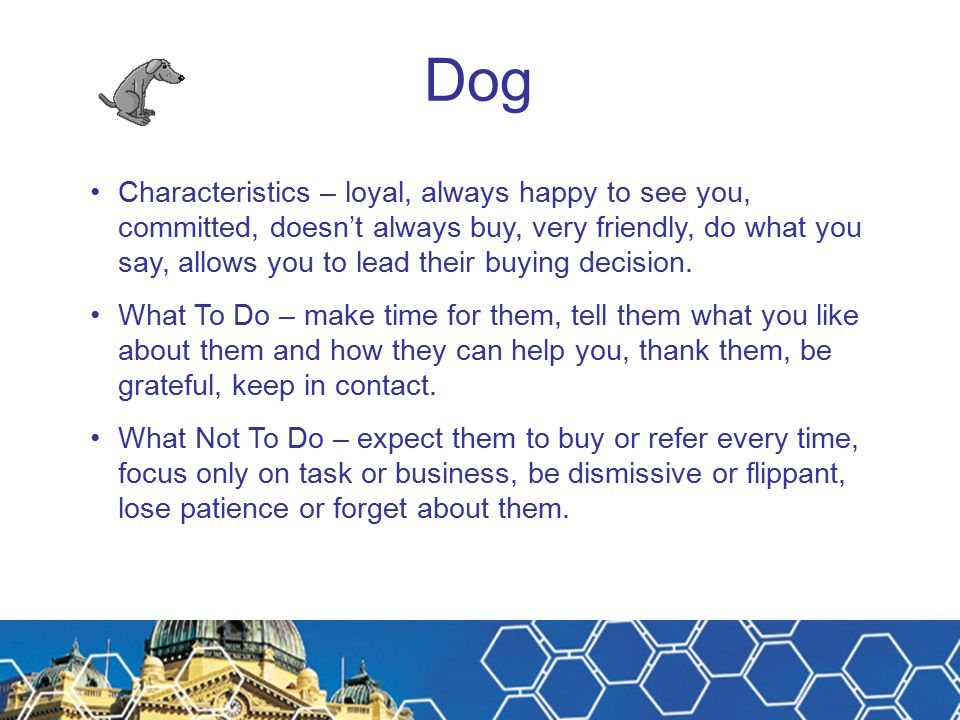 Dog Characteristics – loyal, always happy to see you, committed, doesn't always buy, very friendly, do what you say, allows you to lead their buying d