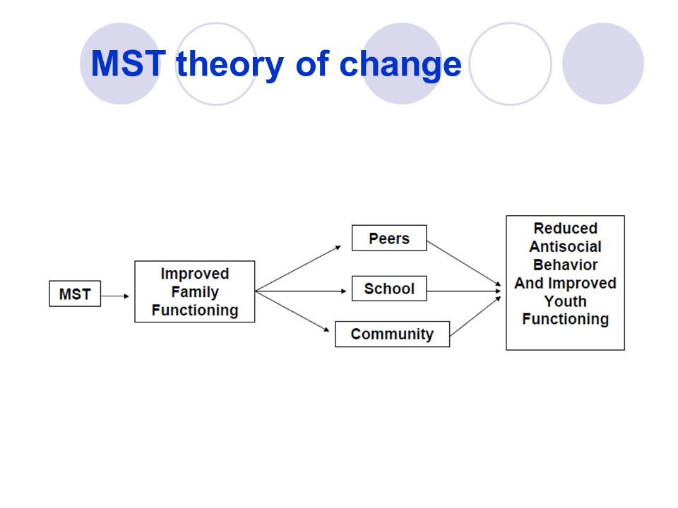 MST theory of change