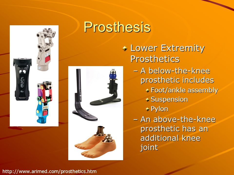 Prosthesis Lower Extremity Prosthetics –A below-the-knee prosthetic includes Foot/ankle assembly Suspension Pylon –An above-the-knee prosthetic has an additional knee joint http://www.arimed.com/prosthetics.htm