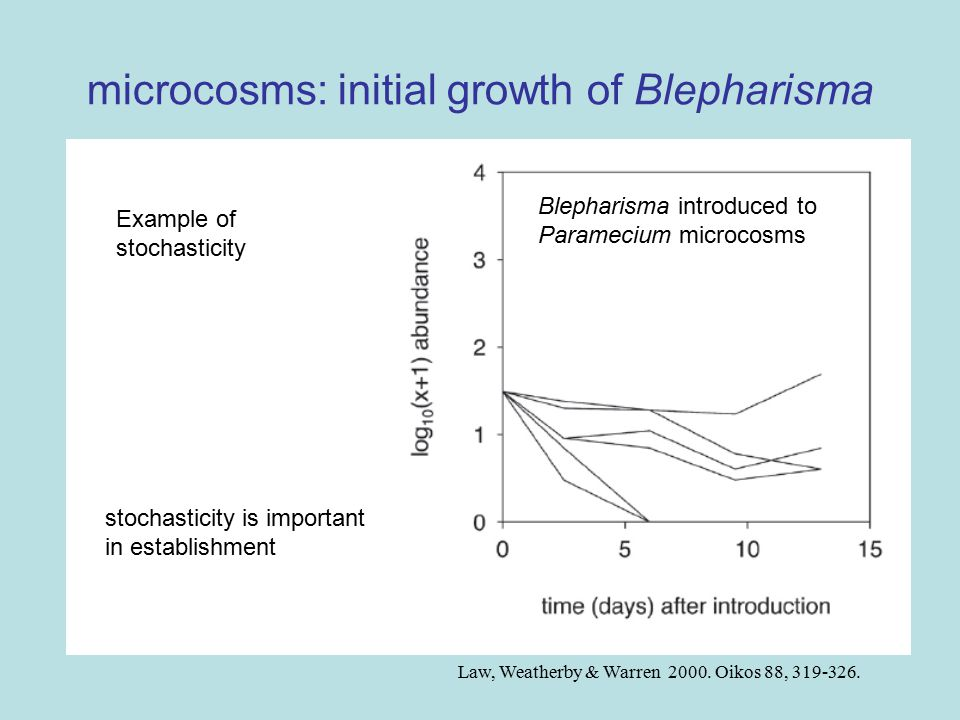 microcosms: initial growth of Blepharisma Law, Weatherby & Warren 2000.