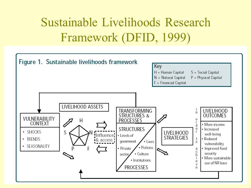 Sustainable Livelihoods Research Framework (DFID, 1999)