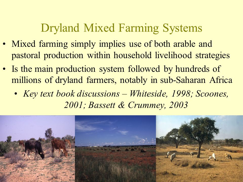 Dryland Mixed Farming Systems Mixed farming simply implies use of both arable and pastoral production within household livelihood strategies Is the ma