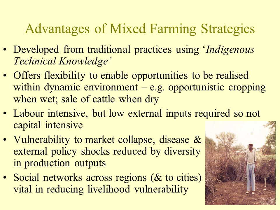 Advantages of Mixed Farming Strategies Developed from traditional practices using 'Indigenous Technical Knowledge' Offers flexibility to enable opport
